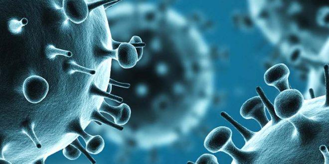 h1n1-flu-image_tcm7-175476